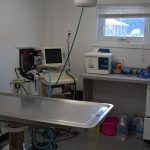 A veterinary office for dental procedures